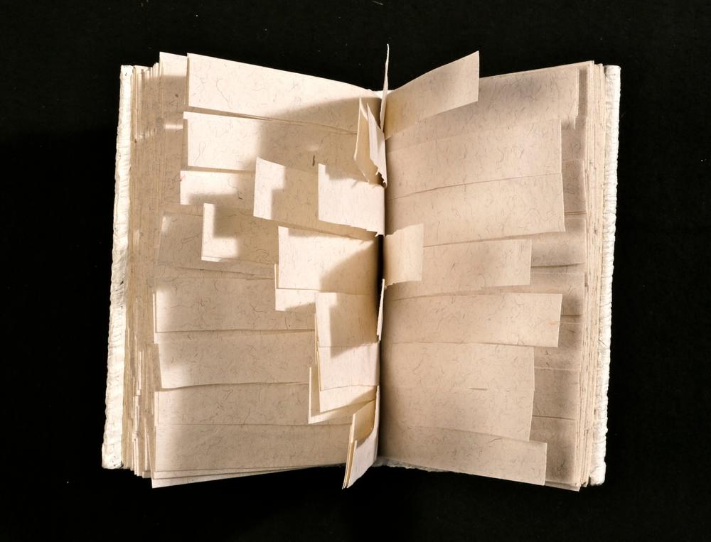 Stor retrospektiv med danske kunstnerbøger