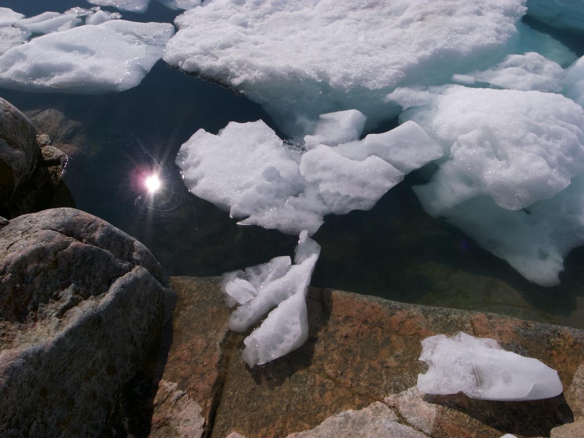 Stilrent arktisk eventyr